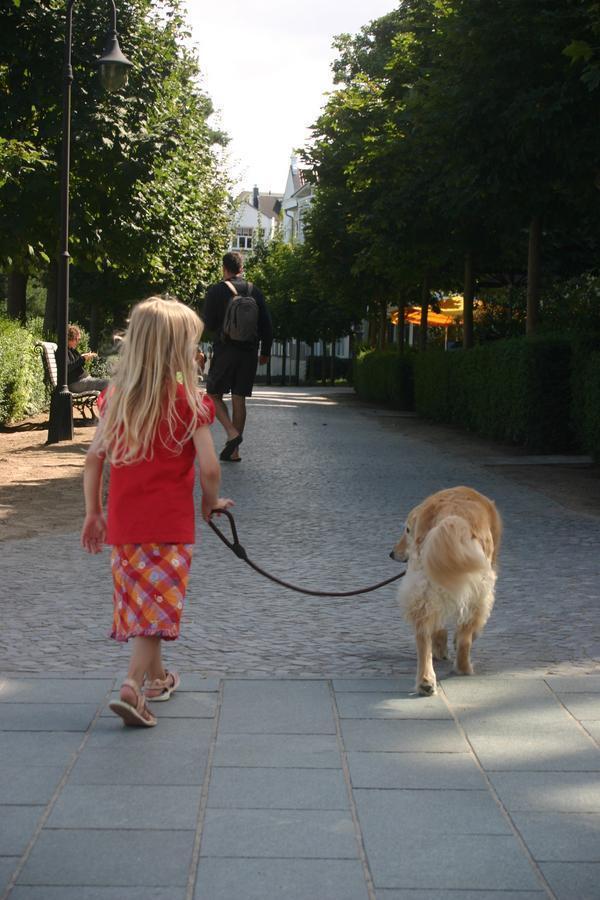 Ferienwohnung Binz Hund